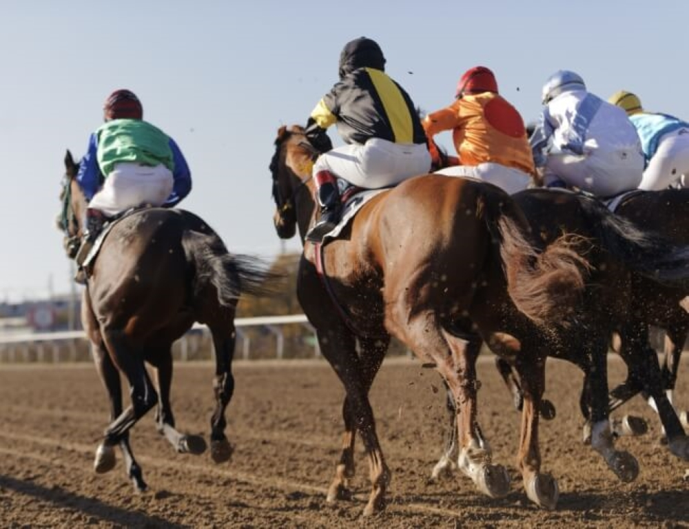 Best Bookies for Grand National Betting: Our List on Bookies