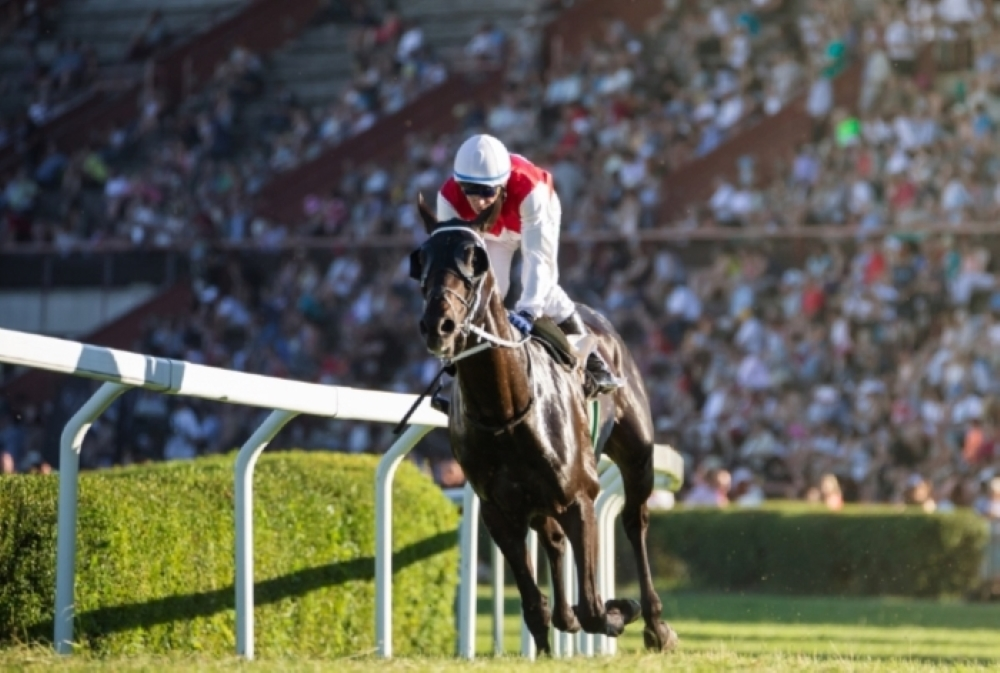 Sky Bet Grand National Offers 2020: Read about Sky Bet Grand National Possibilities