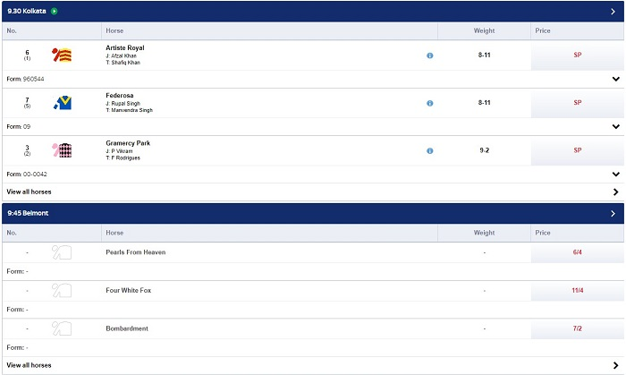 Skybet Horse Racing Offers