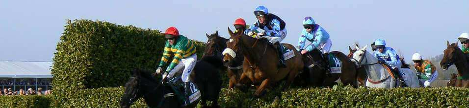 Bet on the Grand National with bet365